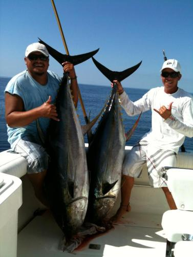 My Marlin Puerto Vallarta fishery