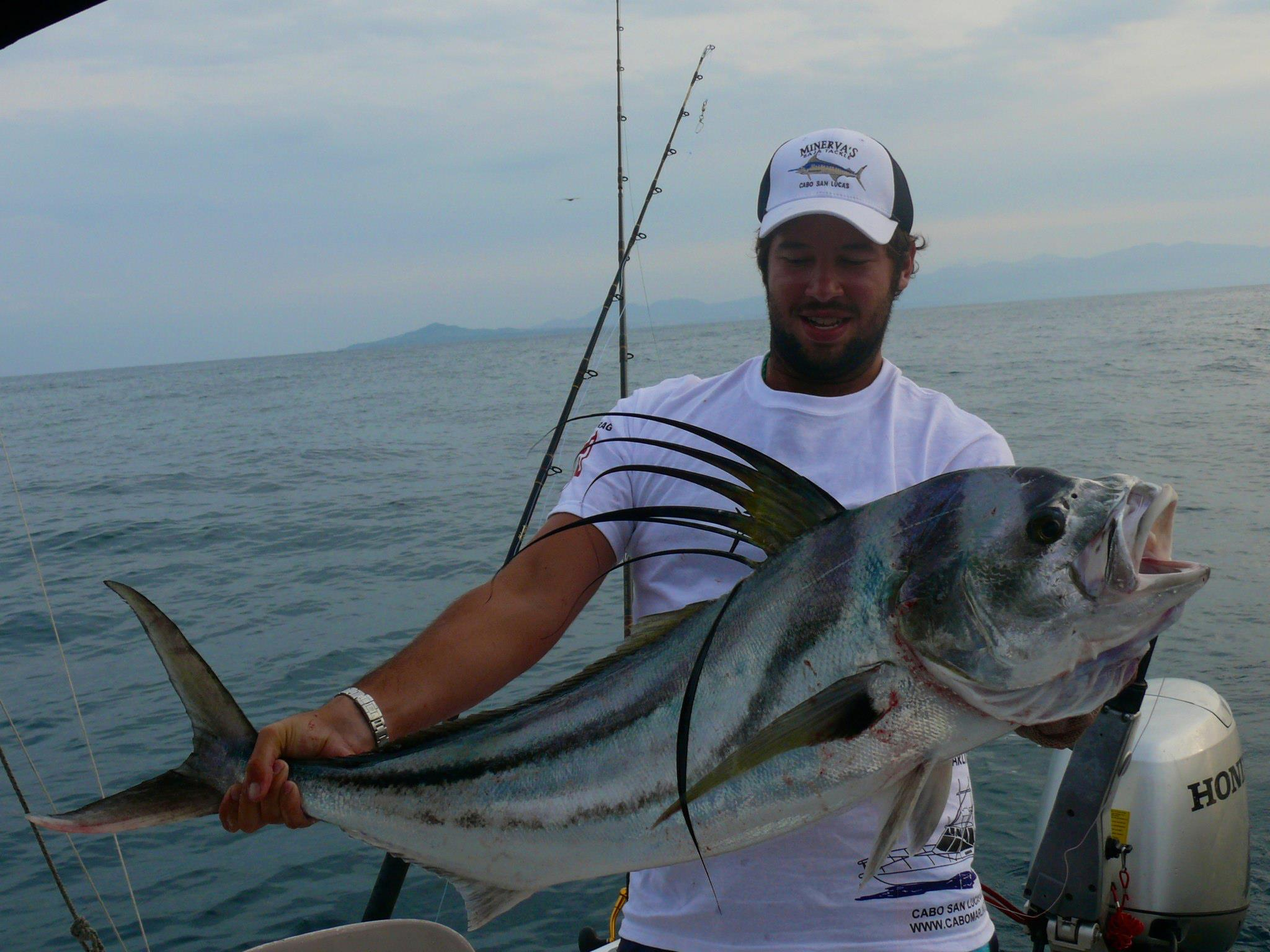 Puerto vallarta fishing report september my marlin for Puerto vallarta fishing