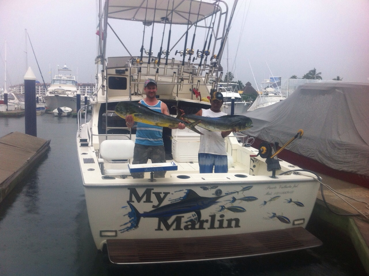 how to use outriggers for live baiting for marlin