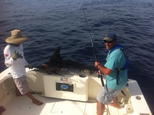 Puerto Vallarta fishing report February My Marlin