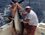 Yellowfin Tuna 150 lbs with Mark Tayler