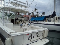 1Puerto Vallarta fishing charter luxury 36 ft luhrs yacht (26) - Copy