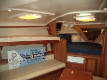 1Puerto Vallarta fishing charter luxury 36 ft luhrs yacht (9)