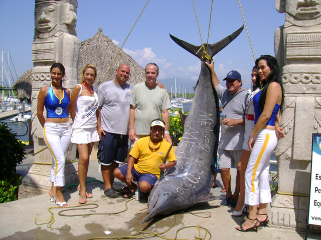 Record Marlin caught in Puerto Vallarta by captain Steve Torres